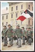"""Sammelbild Propaganda , """" Deutschland Erwacht """" Bild 14  , Farbig"""