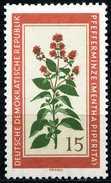 A11-15-5) DDR - Michel 759 - ** Postfrisch - 15Pf  Einheimische Heilpflanzen