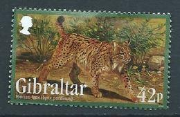 GIBRALTAR 2012 ENDANGERED ANIMALS II IBERIAN LYNX USED NOT CANCEL