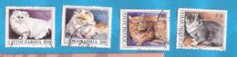 1992  2544-47  FAUNA  GATTI  KATZEN  JUGOSLAVIJA JUGOSLAWIEN  USED