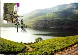 ALTO DOURO VINHATEIRO VIN WINE VINO VINHO PORTUGAL CARTE MAXIMUM - MAXICARD (2 SCANS)