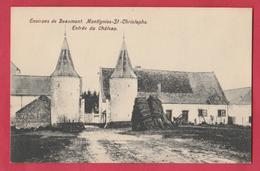 Montignies-St-Christophe ( Erquelinnes ) - Entrée Du Château ( Voir Verso ) - Erquelinnes
