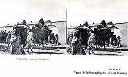 # Algérie - Biskra    - CP Stéréoscopique - Atatich (Palanquin) - Estereoscópicas