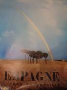 AFFICHE  : ESPAGNE ,champs En CASTILLE  ,H 99,5 L 61,9 - Affiches