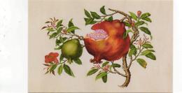 Postcard - Art - Fruit  And Veg - Punica Granatum - Pomegranate - Watercolour By Wang Liu Chi New - Unclassified