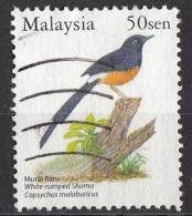 1027 Malesia 2005 Uccelli Birds Copsychus Malabaricus Passeri Shama Groppabianca Used