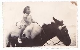 26048 Trois 3  Photo -famille  Enfant Plage Ane Monkey Tricycle  Belgique - - Personnes Anonymes