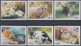 2007.47 CUBA MNH 2007. GATOS DOMESTICOS. CAT FELINE.