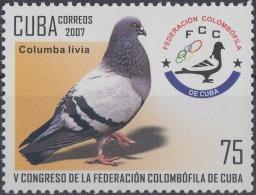 2007.52 CUBA MNH 2007. V CONGRESO FEDERACION COLOMBOFILA. PALOMA PIGEON BIRD COLOMBOFILIA.