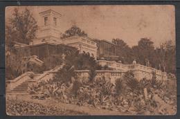 UdSSR 1927, Postkarte, Gelaufen, Sotschi, Sukkulenten,  / USSR 1927, Postcard, Used, Sochi, Succulents
