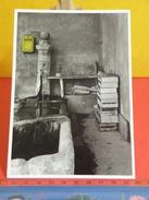 Cartes Postales > Thèmes > Photographie > Un Clin D'oeil Aux Boîtes à Lettres - Non Circulé - Photographs