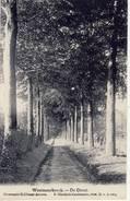 Westmeerbeeck Westmeerbeek Hulshout De Dreef - Hulshout