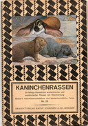 Grand Dépliant ( 90/60 Cm)(  KANiNCHENRASSEN ) 24 Farbige Rassenbilder .2 Scans - Animaux