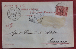 S.SECONDO PARMENSE  ANTONIOLI & C. MOLINO A CILINDRI CARTOLINA PER CARRARA IL DATA 16/9/1903
