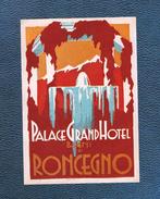 Etrange étiquette   (années 1930 Ou 40)  Du PALACE GRAND HOTEL  BAGNI DI RONCEGNO - Etiquettes D'hotels