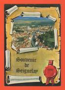 ET/114 SOUVENIR DE SEIGNELAY VUE GENERALE AERIENNE - Seignelay
