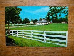 états-unis , Picturesque Horse Farm In The Heart Of The Bluegrass Region , Lexington , Kentucky - Lexington