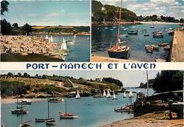 PIE-T-17-106 : PORT-MANECH ET L AVEN - France