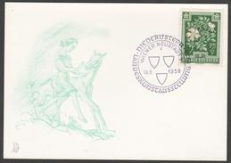 """Österreich 1956: Merkurkarte """"N.Ö.Landesausstellung"""""""