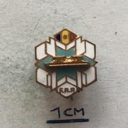 Badge (Pin) ZN004751 - Ice Skating Romania Federation / Association / Union FRP - Patinaje Artístico