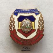 "Badge (Pin) ZN004755 - Military (Army) Romania ""To Defend Homeland"" - Militaria"
