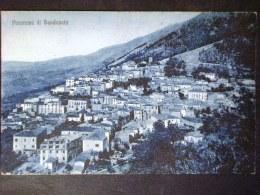 CAMPANIA -CASERTA -SANDONATO -F.P. LOTTO N° 580 - Caserta