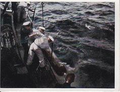 CAID Sammelbild - Unsere Reichsmarine - Gefangener Torpedo (27594) - Cromo
