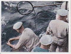 CAID Sammelbild - Unsere Reichsmarine - Einfangen Eines Torpedos (27595) - Cromo