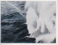 CAID Sammelbild - Unsere Reichsmarine - Laufender Torpedo (27596) - Cromo