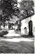GOUVY (6670) : Un Coin Du Village. CPSM Peu Courante. - Gouvy