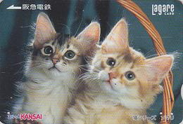 Carte Prépayée Japon - ANIMAL - CHAT Chats & Panier 1000 - CAT Cats Japan Prepaid Card - KATZE Lagare Karte - 3848 - Cats