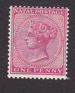 Natal, Scott #67, Mint Hinged, Victoria, Issued 1884 - Natal (1857-1909)