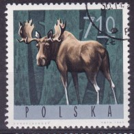 POLAND 1965 Moose Fi 1494 Used