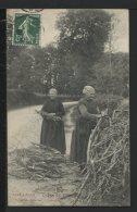 19 LA COUPE DU BOIS PAR LES FEMMES - 1909 - Autres Communes