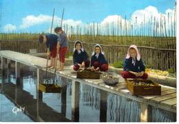 33 Folklore De France Bassin D´Arcachon N°10 Groupe De Guyan Mestras Parqueuses Au Triage Des Huîtres 1971 - Arcachon