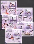 C95 2009 UNION DES COMORES FAUNA BIRDS LES FLAMANTS 5LUX BL MNH