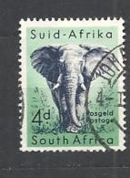 SUDAFRICA    1954 Local Animals    Loxodonta Africana   WM SRINGBOK   USED - Zuid-Afrika (...-1961)