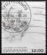 Denmark 2009 KUNST   Minr..1543  ( O)    ( Lot  L 1493 )
