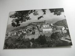 MINUCCIANO LUCCA PANORAMA TRA LE FRONDE DEGLI ALBERI - Lucca