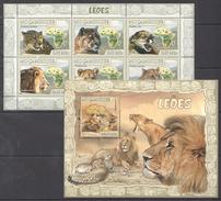 B362 2007 MOCAMBIQUE FAUNA ANIMALS LEOES LIONS KB+BL MNH
