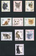 POLOGNE- Y&T N°1332 à 1341- Neufs Avec Charnières * (chats)