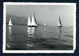 GENOVA - Regata Al Lido - Foto Del Cav.Uff. Mario Agosto - - Genova