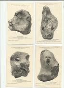 Genève XIV Congrès Anthropologie Archéologie 1912 Age De La Pierre 1er Essai De Sculpture De L'Homme 6 Cartes Fc43 - Europa
