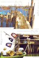 Hong Kong China -  Fishing Villages -  (RM12096) - Vissen