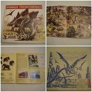 Album PANINI Animaux Prehistorique(manques 41 Images) - Livres, BD, Revues
