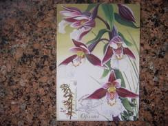 Uk.108S. Orchid.  Epipactis Palustris.  Premier Jour. Kartmaksymum. Ukraine. - Fleurs