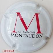 MONTAUDON N° 14 - Champagne