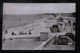 14, COURSEULLES SUR MER, LA PLAGE ET LA DIGUE, 1953 - Courseulles-sur-Mer