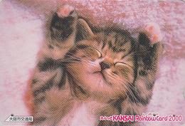 Carte Prépayée Japon - ANIMAL - CHAT - CAT Japan Prepaid Card 2000 - KATZE Rainbow Karte - GATO - KAT - 3865 - Gatos