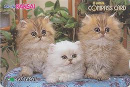 Carte Prépayée Japon - ANIMAL - CHAT 3 Chats - CAT Cats Japan Prepaid Nankai Card 2000 - KATZE Karte - 3880 - Gatos